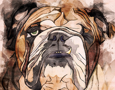 Illustration: One Eyed Willy The British Bulldog