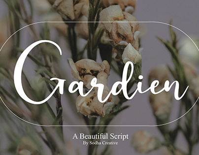 Gardien Beautiful Script