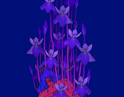 Iris erosion