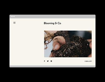 B2B Branding + Website
