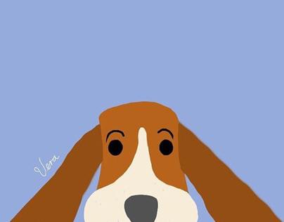 Animales / fondos de pantalla