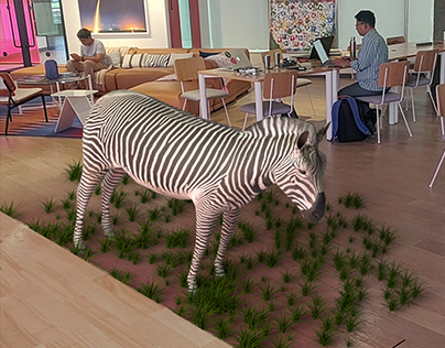 Zebra in real world( WEWORK)
