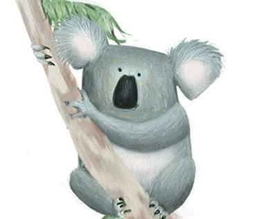 Koala lifestylezzz
