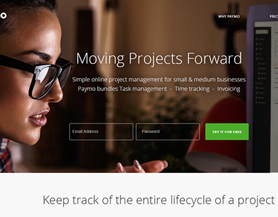 Paymo Alternative Home Page Redesign