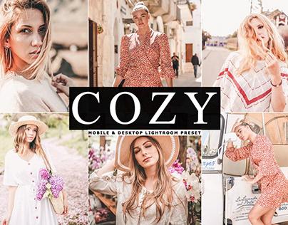 Free Cozy Mobile & Desktop Lightroom Preset