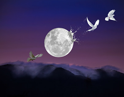 The Moon Series