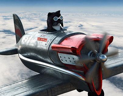 Air V Crew