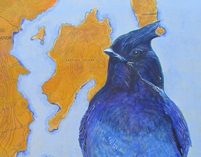 Avian Fables 4