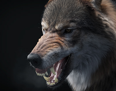 The Mad Wolf (studio render)