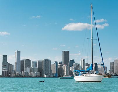 Miami Cityscapes