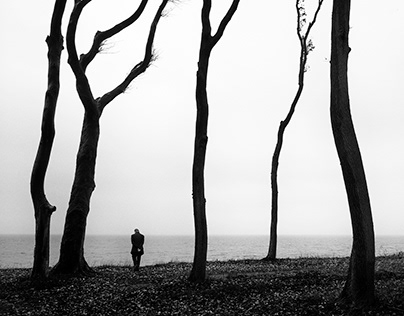 People & Trees