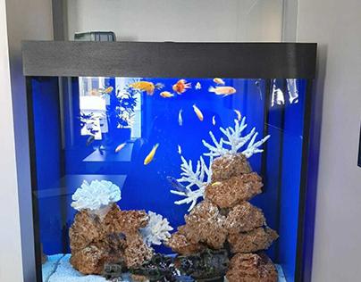 Морской аквариум в аренду для офиса СТК «Развитие»