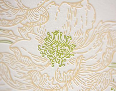 Letterpress spring postcards set