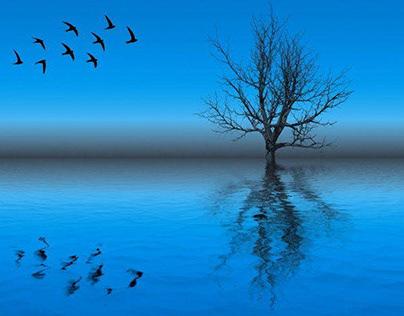 Ora blu: il momento magico tra buio e luce