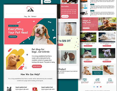 Mailchimp , html email template , Newsletter