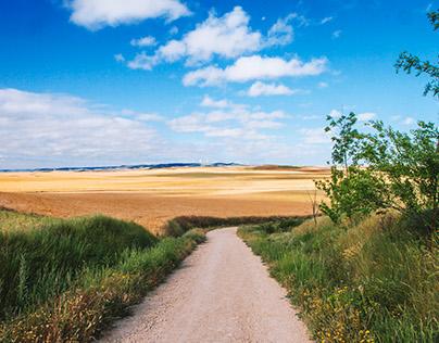 Camino de Santiago, 875 Km Andando