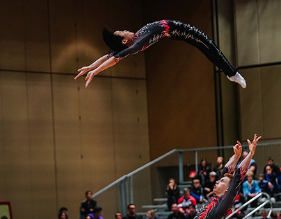FIG World Cup 2019 - Sports Photography