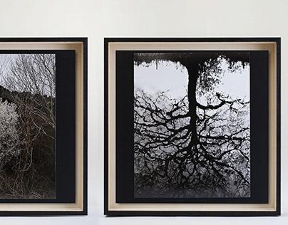 """""""Darkening Ligne Claire"""" exhibition"""