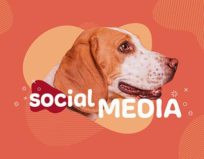 Social Media - Pet Health