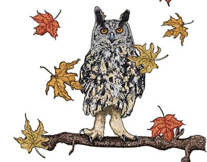 Autumn/Winter Wildlife Illustrations