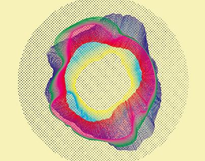 Movimientos Naturales - Sistema Gráfico