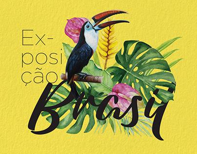 Exposição Brasil | Shopping Minascasa