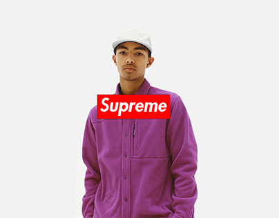 Redesigning the SUPREME Website