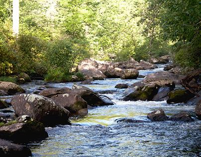 South Carolina Hike: Summer 2020