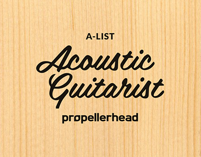 Acoustic Guitarist by Propellerhead