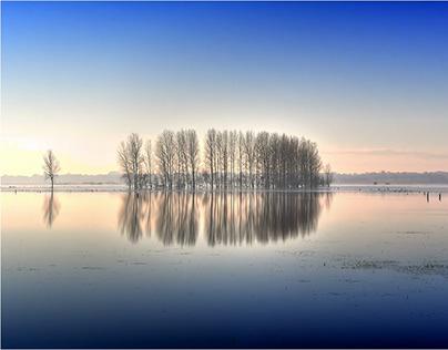 White Floods / Le Marais Blanc