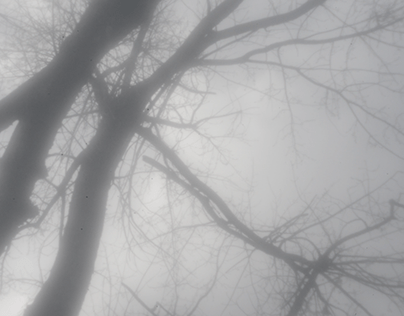 Experiments in Pinhole Video