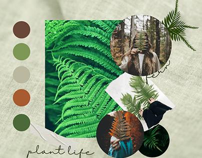 Inspiração moodboard com tons de terra e verdes