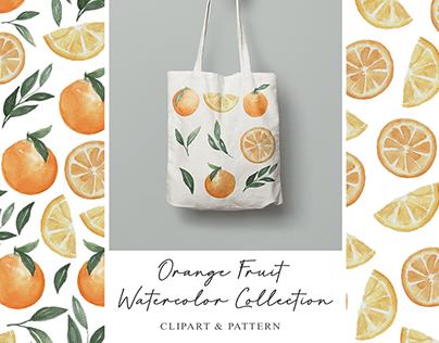 Orange Fruit Watercolor Collection