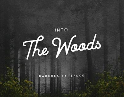Baheula Vintage Typeface
