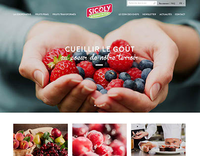 Webdesign for Sicoly