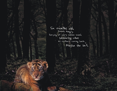 Save Our Tigers - TVC