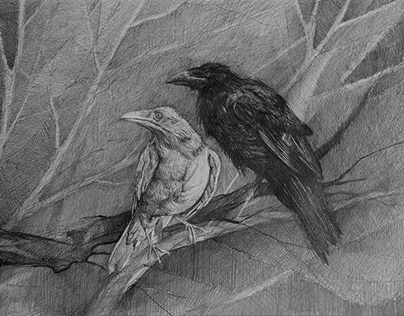 Raven Tales...