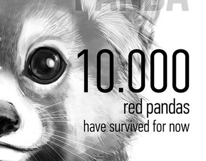 RED PANDA | eco post