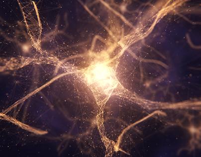 Plexus NEURONS | Miral 2018