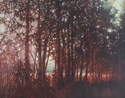 Fine Art: Landscapes