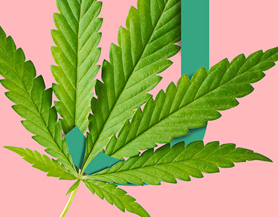 Cannabis Typography