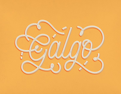 Lettering, brands and illustrations