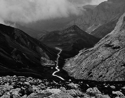 Sudtirol WildLife