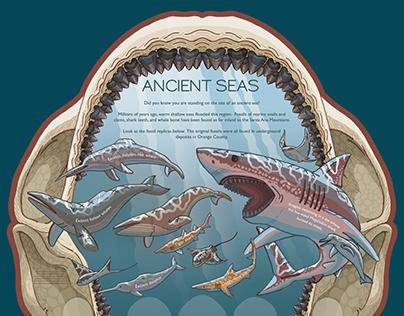 Ancient Seas