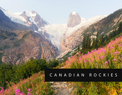 The North West Part 2: Canadian Rockies | 2017
