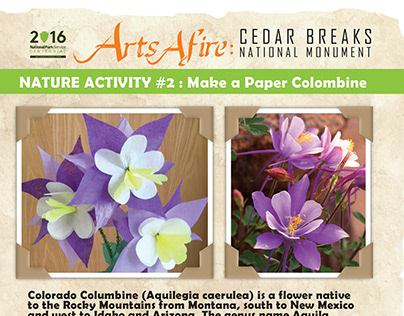 Columbine Paper Flower Craft
