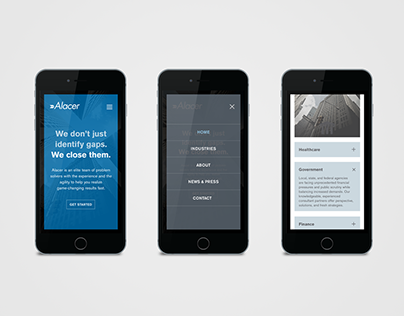 Alacer / Branding + Digital