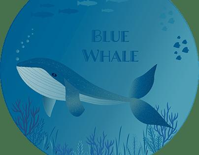 Marine Life Digital Illustrations