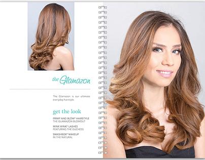 Primp and Blow Look Style Book Print and iPad