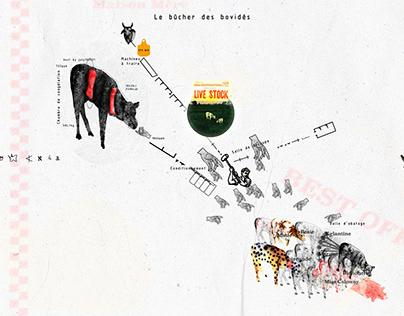 Le bûcher des bovidés / The bonfire of the bovids